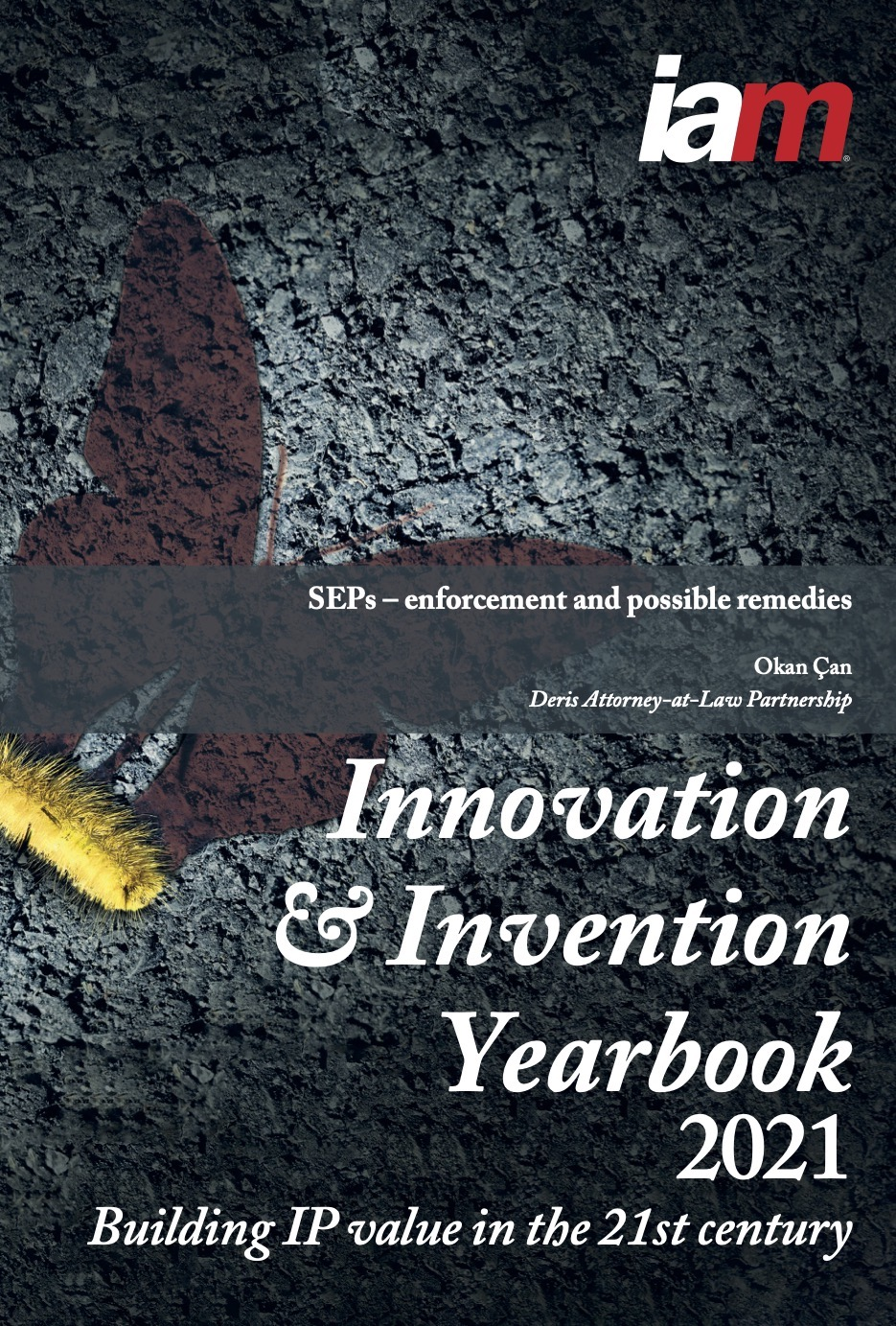 SEPs – Enforcement and Possible Remedies - Innovation and Invention Yearbook 2021